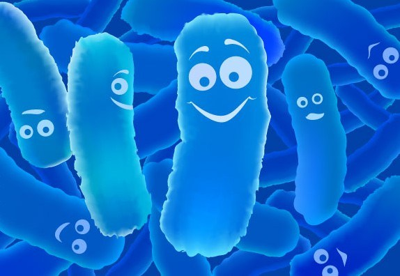 O-que-são-Probioticos