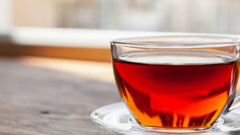 Combata problemas de saúde com o chá guaçatonga